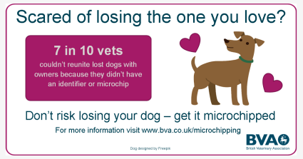 dog-love-microchip-graphic